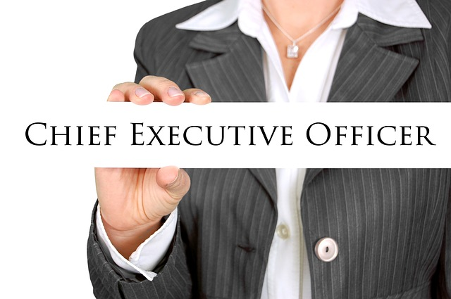CEO betyder Chief Executive Officer
